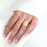 Ring snake gold_